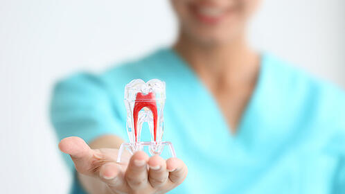 what-are-the-most-common-dental-procedures-root-canal